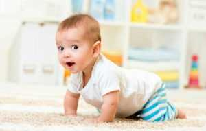 Что подарить ребенку от 1 до 6 месяцев? что можно подарить мальчику и девочке на полгода