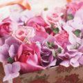 Что подарить теще на день рождения: советы для хорошего зятя