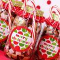 Сладкие подарки - как и из чего делается сладкий подарок своими руками (115 фото и видео)