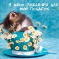 Шуточные поздравления на день рождения с вручением прикольных подарков - .ua