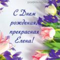 Красивые поздравления с днем рождения Елене ~