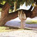 ТОП 151 идея Что Подарить Человеку у Которого Всё Есть в примерах